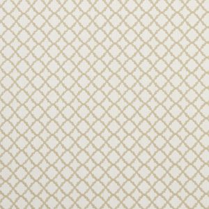 Clarke and Clarke Ariyana Fabric in Ivory
