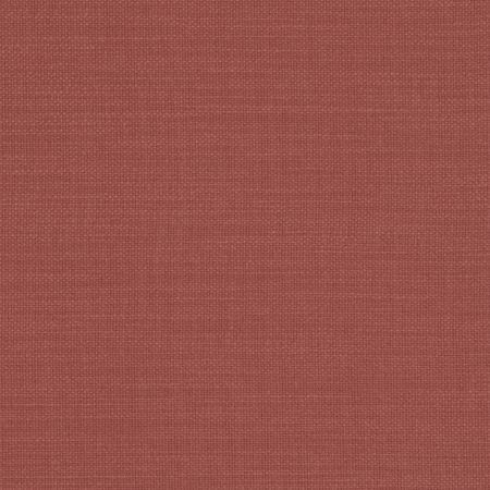 Clarke & Clarke Nantucket in Sienna
