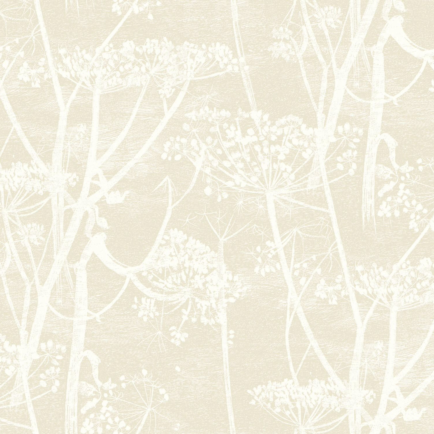 Cole & Son Cow Parsley Wallpaper 95 9051